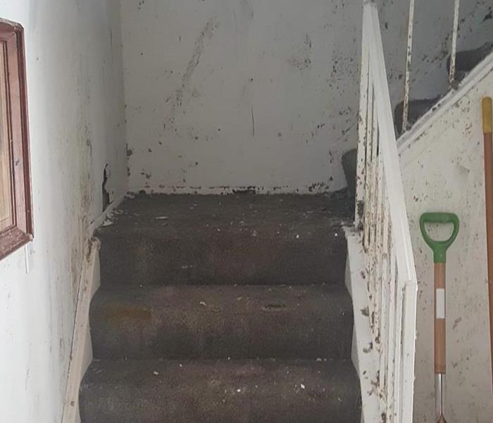 Cleared Out Stairway After Cleanup Started